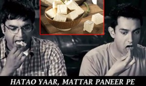 Does Paneer (Cheese) Make You Fit or Fat? Find Out Here!