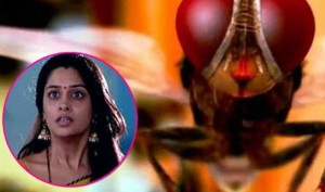 Twitterati Makes Fun Of 'Sasural Makhee Ka' as Simar Turns Into 'Fly'