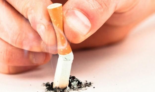 tobacco5