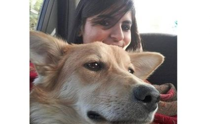 Asked To Abandon Pet Dog For Marriage, Bengaluru Girl Dumps Prospective Groom Instead