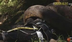eaten-alive-by-anaconda