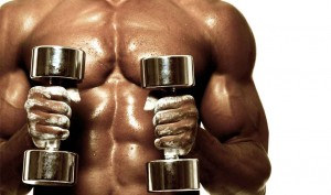 Best Muscle Building Supplement – What is the Best Supplement For You and Your Body?