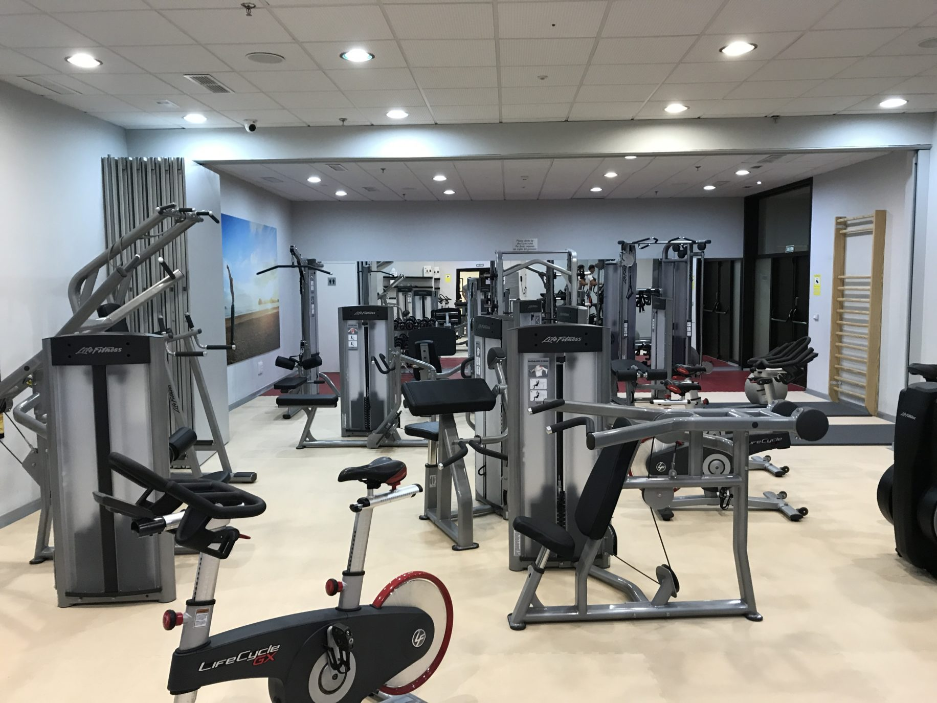 Commercial Gym Equipment | SoPosted.com