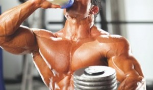 The Benefits of Probiotics in Bodybuilding