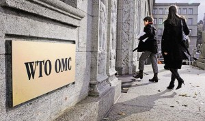 No breakthrough for India on food security as WTO ministerial ends in deadlock