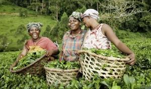 Six Great Ways to Celebrate International Women's Day